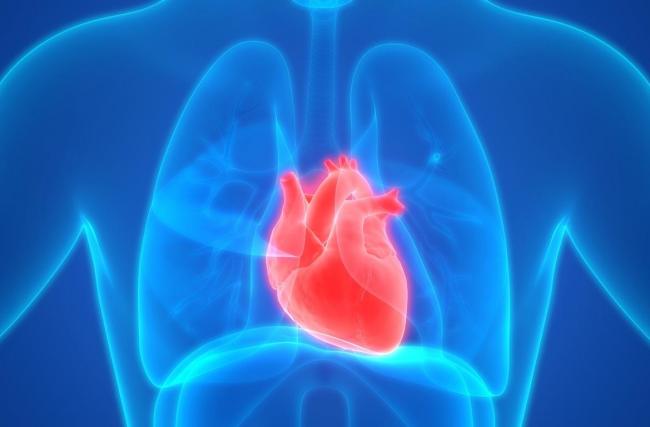 Por que ir ao cardiologista?